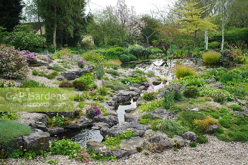 Limestone rock garden in spring with stream leading to pond and wide variety of alpine plants - Glen Chantry, Essex