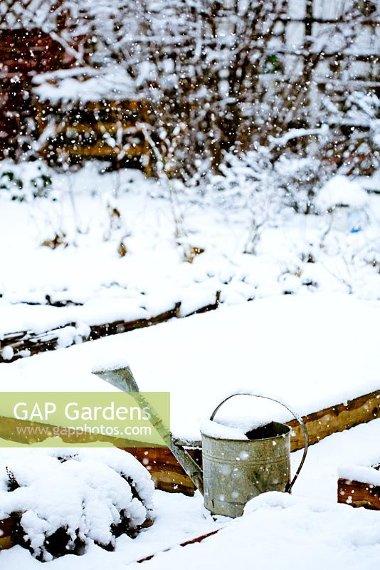 Vegetable garden on a snowy day