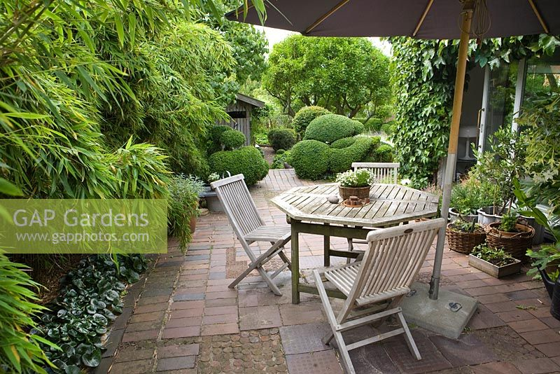 terrace of terracotta tiles and bricks plants include bamboo and buxus box balls
