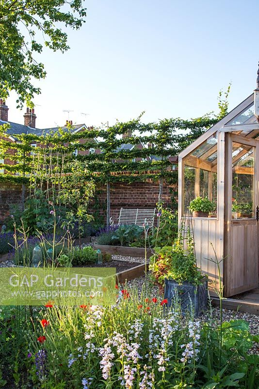 Potager in summer with greenhouse, raised beds and bench