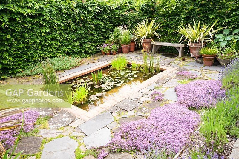 Charmant Il Vivaio, A Small Enclosed Garden With A Rectangular Pond And  Mediterranean Plants Including Lavenders