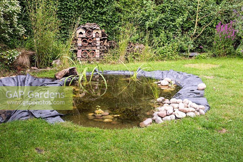 Development of the pond with aquatic plants and stones