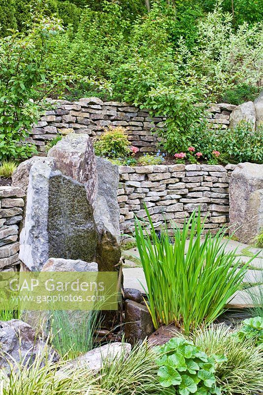 Carex - grasses infront of drystone wall and water feature