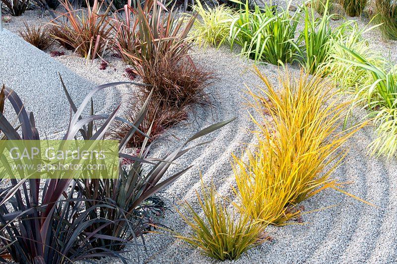 Gap Gardens Sempervivum Uncinia Uncinata Rubra