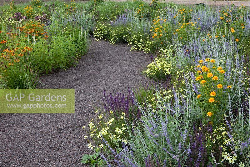 GAP Gardens - Prairie garden with Coreopsis, Perovskia, Heliopsis ...