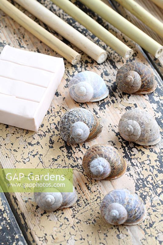 Step by step of making snail shell cane toppers - Snail shells, bamboo canes and modelling clay