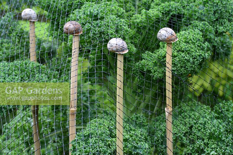 Step by step of making snail shell cane toppers - The finished cane toppers supporting netting in a vegetable bed