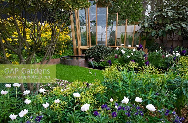 RHS Chelsea Flower Show 2013 Centenary Gold medal winning garden - Curving lines and leaf forms respond to elements of the Olympic Park planting includes Euphorbia x pasteurii Paeonia 'Shirley Temple'