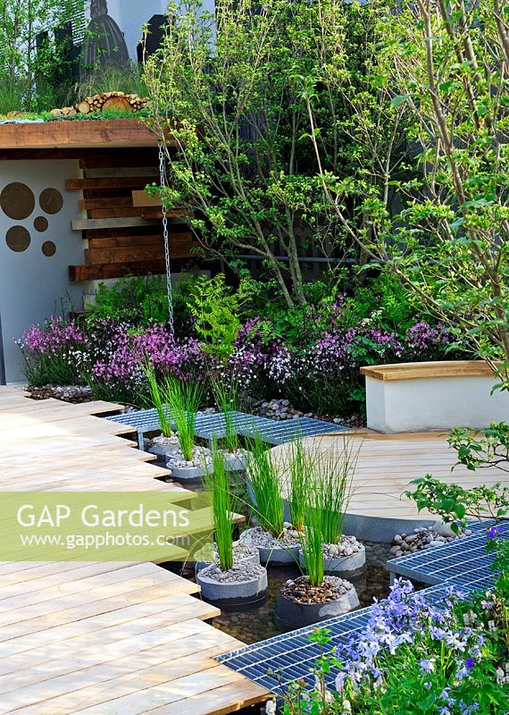 Gap gardens rbc blue water roof garden gold medal winner chelsea flower show 2013 juncus - Chelsea flower show gold medal winners ...