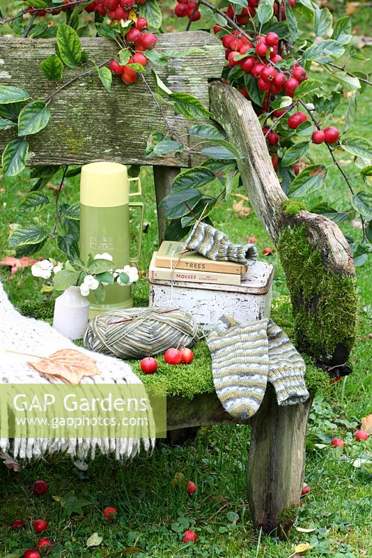 A rustic, moss covered bench with thermos flask, lunchbox, woollen throw, sock knitting, vase of snowberries and Observer books