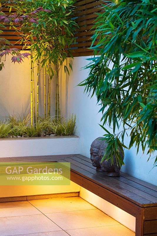 Minimalist garden lit up at night. Wooden bench seat, Buddha head ornament and built in raised beds with Phyllostachys Aurea, Acorus 'Ogon'