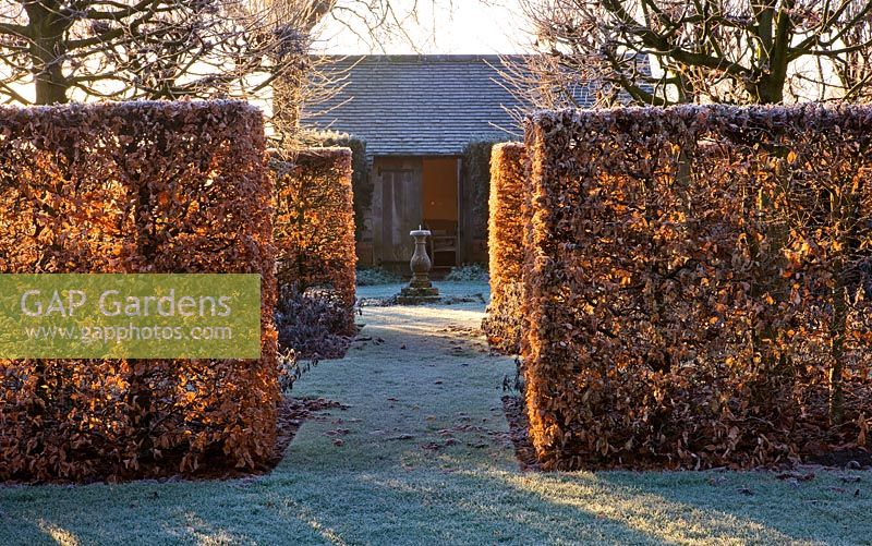 Winter garden in frost - view through beech hedging at dawn to sundial and summerhouse. Lawn with frost. Wollerton Old Hall, Shropshire