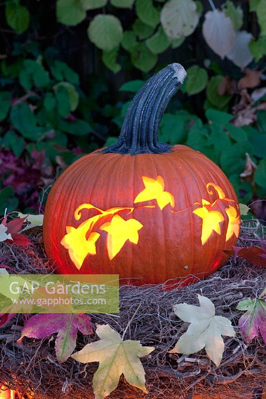 Pumpkin carved with floral pattern