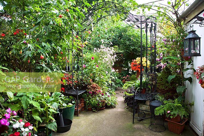 GAP Gardens - Latimer Road - Feature by Rachel Warne - GAP Gardens ...