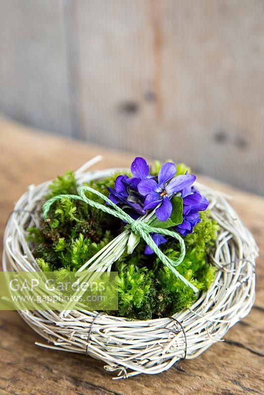 Birds nest planted with Viola odorata and moss