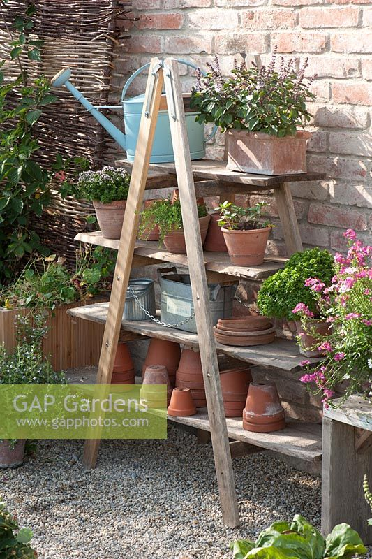 Groups of pots and tools on shelving made from salvaged art easel - summer