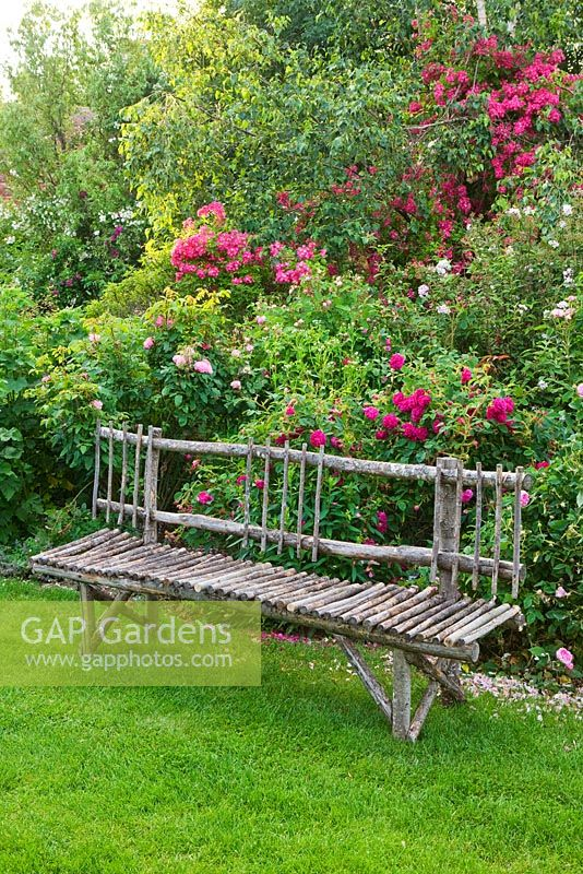 Lawn and a decorative wooden chestnut bench by Stephane Cassine beside Rosa 'Henri Martin' and Rosa 'Maria Lisa'. Les Jardins de Roquelin, Loire Valley, France