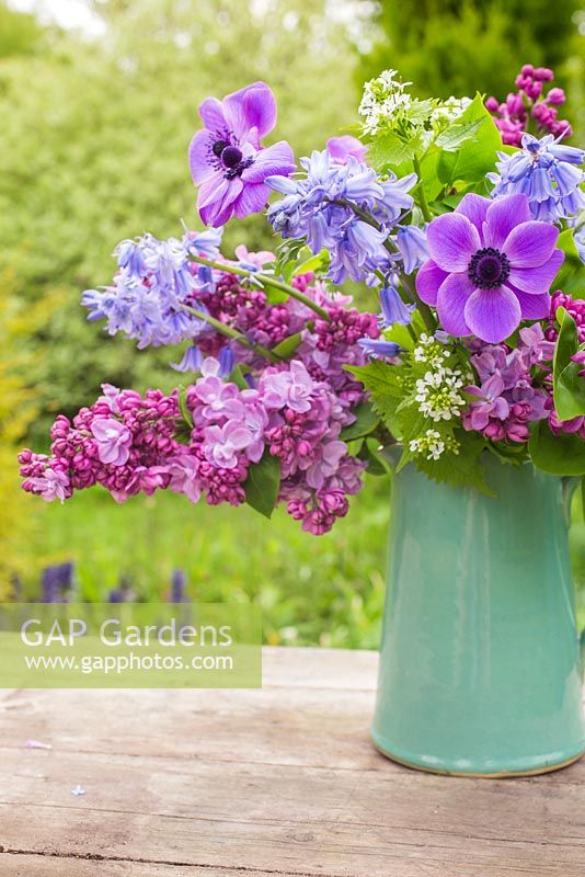 Display of flowers in a jug. Syringa vulgaris, Anemone coronaria, Hyacinthoides non-scripta, Lunaria annua alba 'White Honesty'