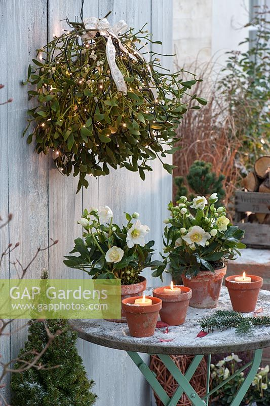 Winter patio decorated with candles and Viscum album - Mistletoe
