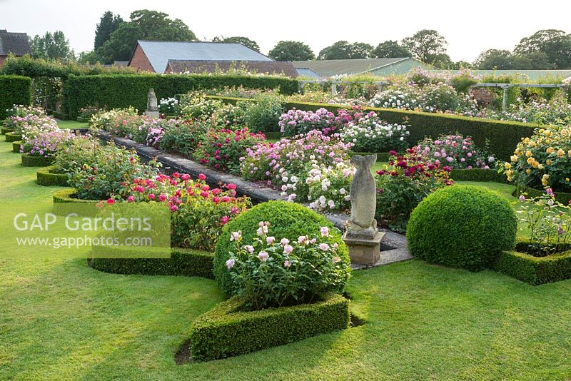 Rose edged with canal serpentine box garden borders Renaissance hedges The and with yew 8qnw8IzOra