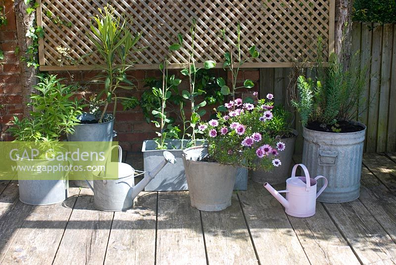Display of galvanised containers on wooden decking