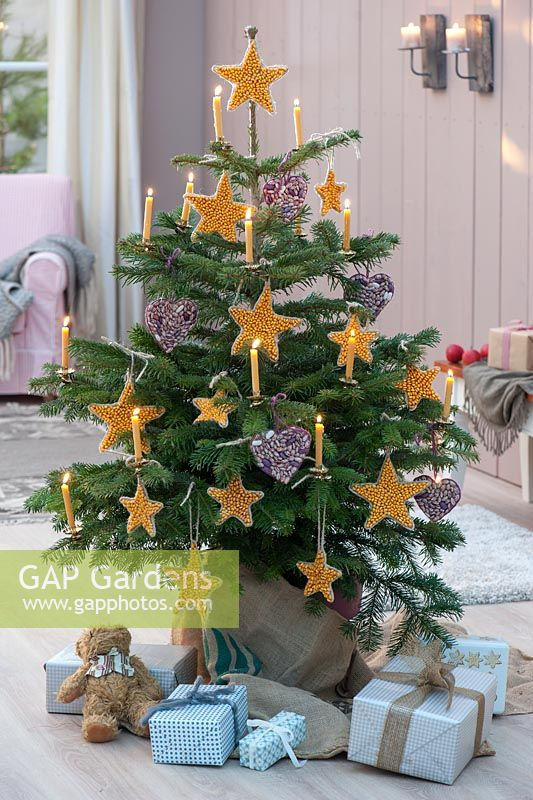 Christmas tree decorated with homemade ornaments ​​made from corn and beans - finished tree