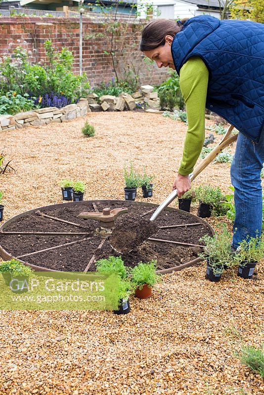 Woman preparing hole for planting herbs in herb wheel
