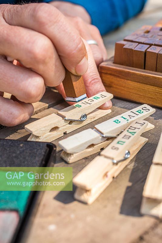 Using a vintage wooden stamp kit to create trendy plant labels