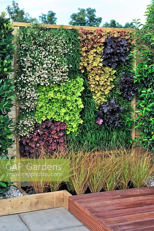 A Hampton Garden. Living Wall Panel