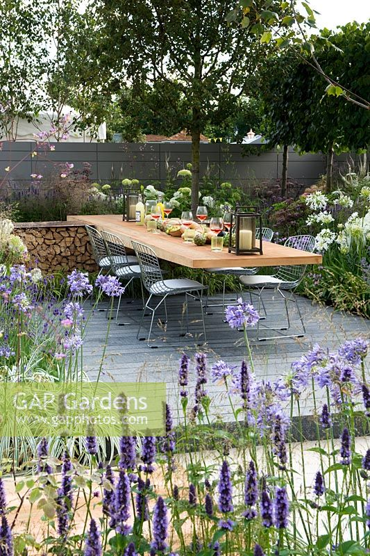 Vestra Wealth's Vista Garden. View through border with Agastache towards laid dining table for outdoor entertaining set on a grey-painted decking surrounded by blue palette planting with Agapanthus and hydrangea Annabelle and pleached hedging. Designer: Paul Martin Sponsor: Vestra Wealth Gold award