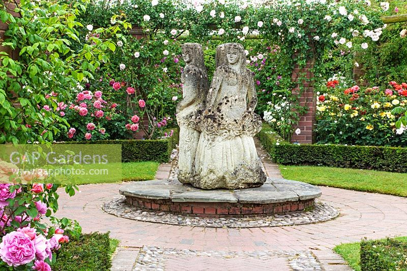 GAP Gardens - The Generous Gardener with \'The Three Graces ...