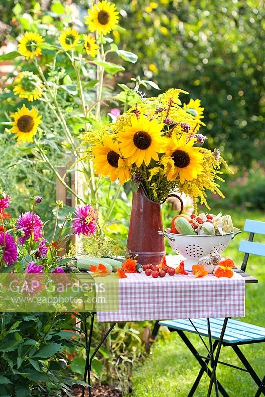 Bouquet of sunflowers and perennials Persicaria, Verbena bonariensis and Solidago in enamel jug with harvested vegetables in summer garden. Border of dahlias.