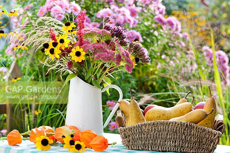 Table with harvested pears and jug of perennials and grasses. Rudbeckia triloba, Persicaria 'Firetail', Verbena bonariensis, Deschampsia cespitosa.