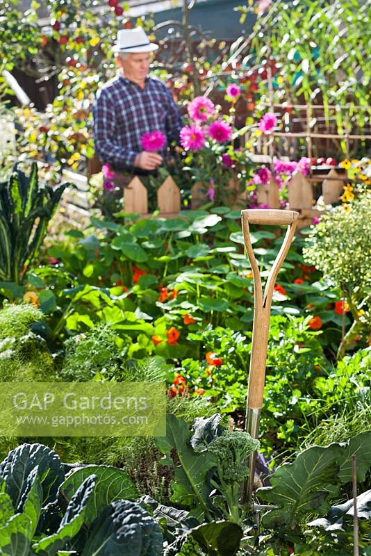 Handle of garden fork in the vegetable garden with gardener behind.