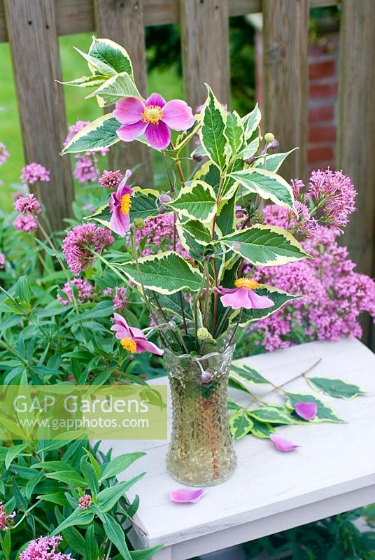 Cut garden flower arrangement - Japanese anenomes and leaves of Weigela florida 'Variegata' in vintage cut glass vase