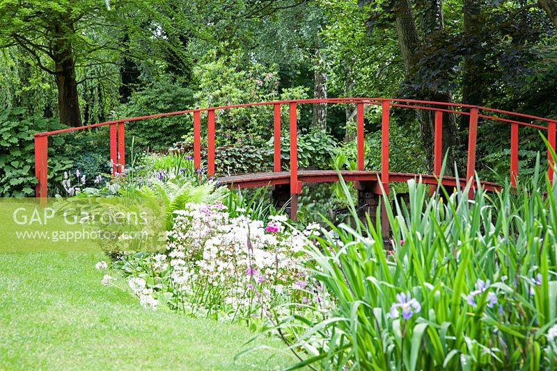 Stream with red Japanese bridge in a woodland garden in Spring.  Wind in The Willows, Open for The National Garden Scheme.