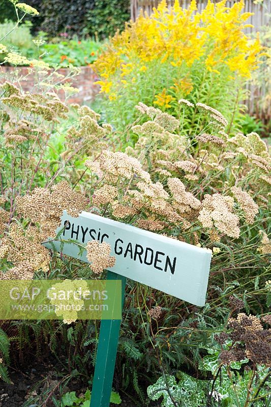 Sign for small physic garden surrounded by achillea and Silybum marianum.