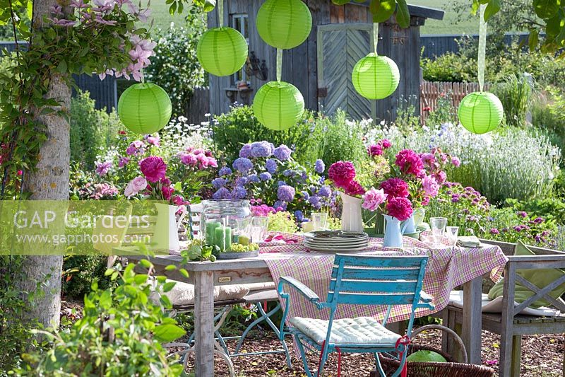 Garden Party in early summer under the walnut tree. Table decorated with Paeonia and paper lanterns