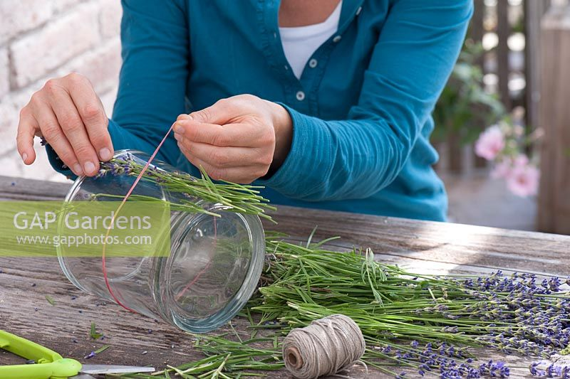 Woman cladding a glass with lavender. Lavandula, glass, scissors, string, rubber band