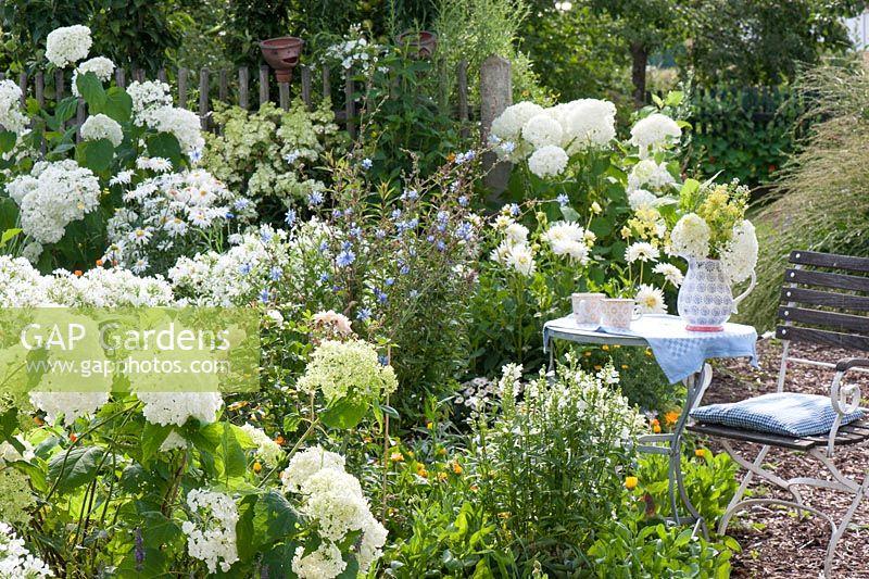 Gap gardens seating area next to white flowerbed hydrangea seating area next to white flowerbed hydrangea annabelle physostegia dahlia mightylinksfo