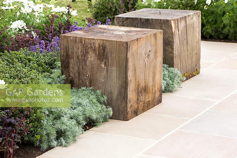 Border planting of Artemisia schmidtiana 'Nana', Ilex crenata and Sedum telephium 'Purple Emperor', beside a stone path accompanied with two wooden seating blocks. Garden: One Hundred Years From Now. Designer: Alex Lindsay. Sponsor: Coolings Garden Centre, Evergreen Garden Design and Build, London Stone. RHS Hampton Court Flower Show, July 2014