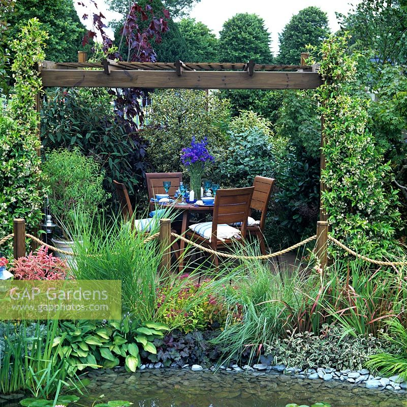 Wooden pergola clothed in fragrant Trachelospermum jasminoides, beside pool edged in sage, hosta, astilbe and grasses. Dining area enclosed in evergreen shrubs.