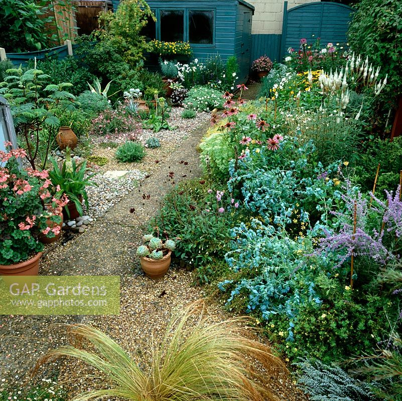 24m x 4m - 8m wide, suburban garden. Gravel planted with succulents, grasses, eucomis, erigeron. Right bed - linaria, cerinthe, perovskia, echinacea and cosmos.