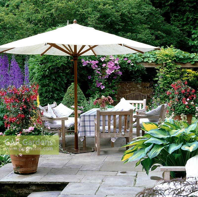 Stone terrace with pots of box, fuchsia, geranium, hosta, acer. Edged in beds of delphinium, campanula and hosta. Parasol shades wooden dining table, chairs and cushions.