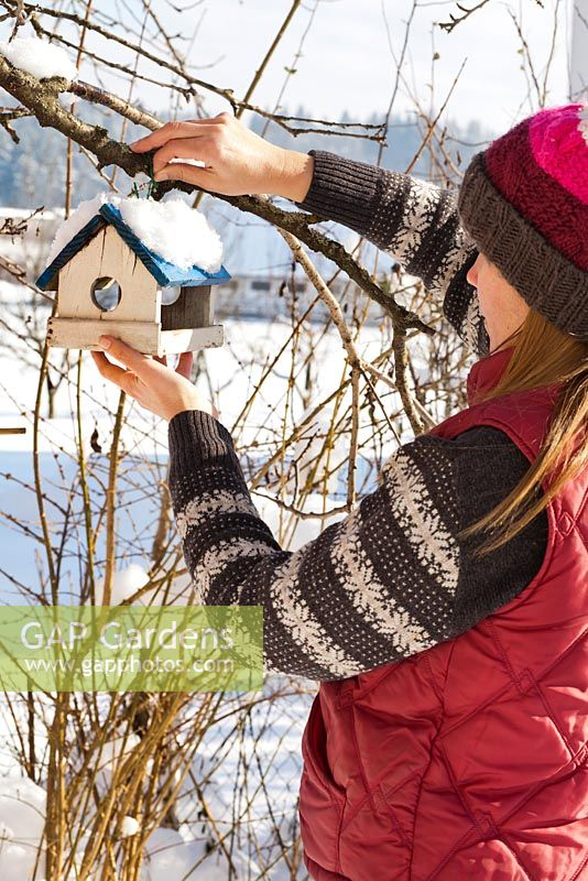 Woman placing bird house on a branch.