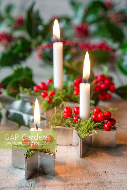 Candles mounted in metal star cutters, with moss and Ilex aquifolium berries