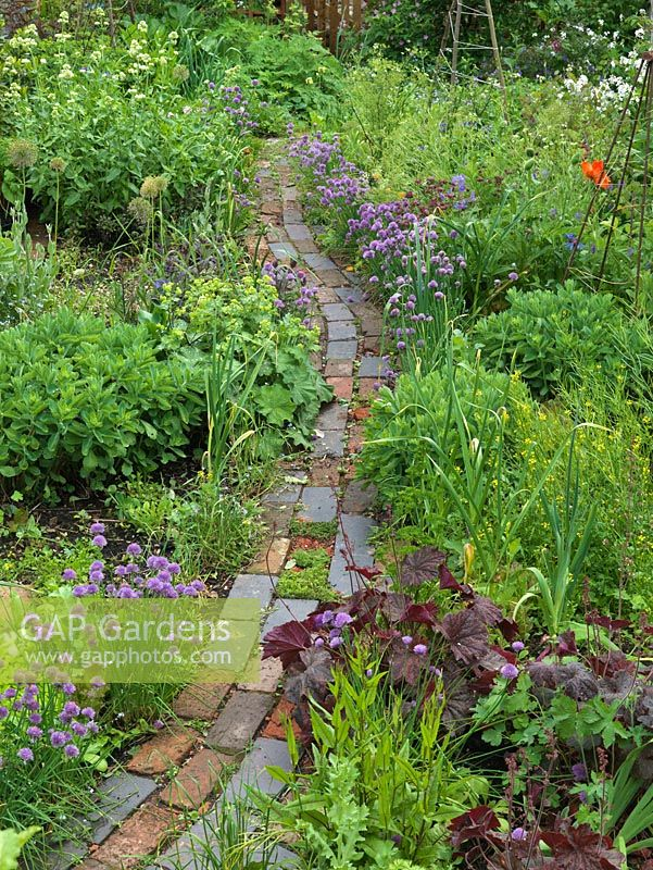 A mix of fruit, herbs, flowers and vegetables thrive in packed beds, separated by winding brick path. Alys Fowler's 18m x 6m, organic back garden. Pretty and productive, a