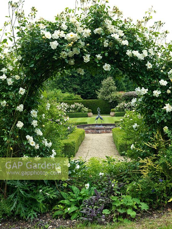 Rosa 'City of York' - covering moongate. View through to lily pond with sculpture and box edged beds