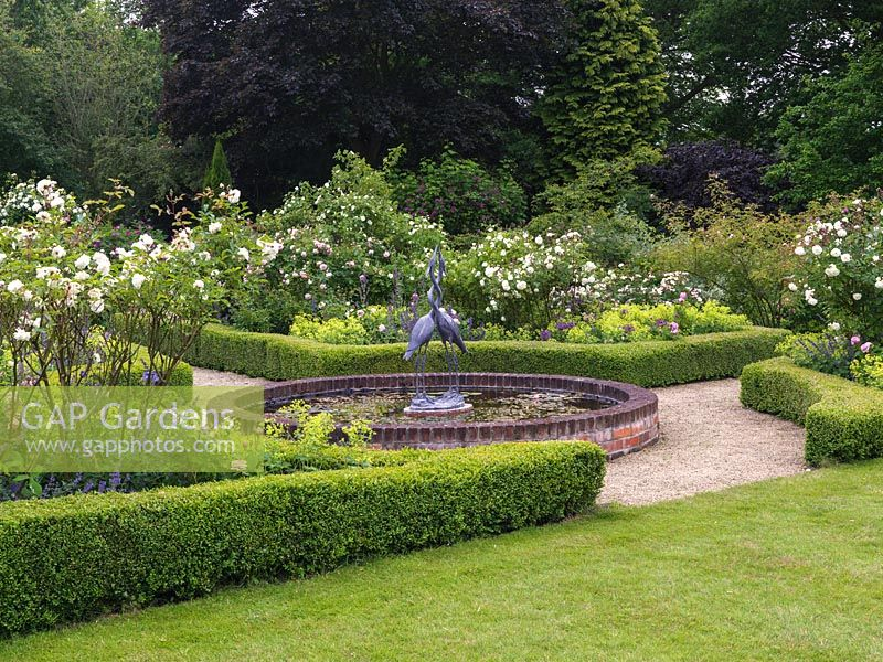 Rose Garden. Central lily pond with sculpture. Box-edged beds of roses - Comte de Chambord, Prosperity, Felicia - Alchemilla mollis, Allium cristophii, camint.