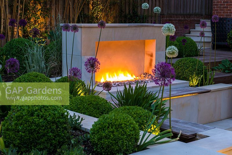 Town garden designed by Kate Gould, lit at night. Flames from an open gas fireplace illuminate the sunken terrace which is edged in beds of box balls interspersed with purple and white allium. Back boundary is planted with tall golden bamboo.